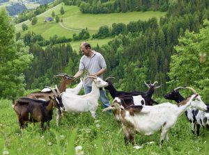 Landwirt bei der Ziegenfütterung - Landwirtschaft und Landschaft, Umwelt. Foto © EU-Kommission, frei für Infozwecke zum Ökolandbau