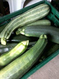 welche Zucchini entspricht der EU-Norm?