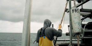 Screenshot aus dem Dokumentarfilm von Justus Worbs «Ostseefischer - Chance auf Überleben?» (das Video ist über das Bild verlinkt). Kaptiän und Fischer Martin Lange an Bord der FRE34
